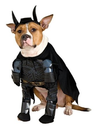 batman dog costume on amazon.