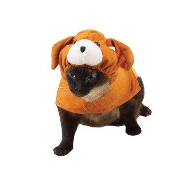 Amazon Enigmas: Halloween Costumes for Cats (Humor)
