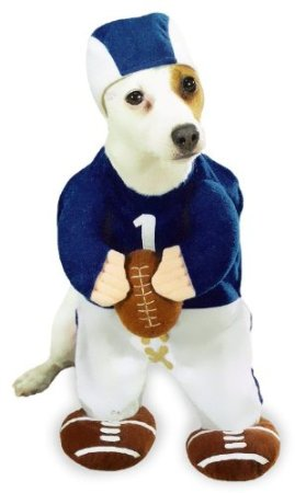 football player dog costume on amazon.com