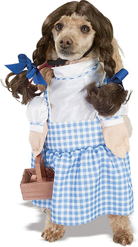 dorthy of oz dog costume amazon