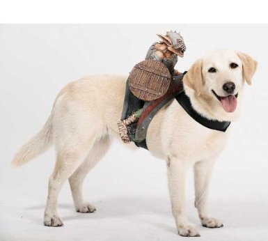 goblin rider dog costume on amazon