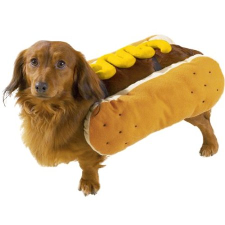 hot dog dog halloween costume on Amazon.
