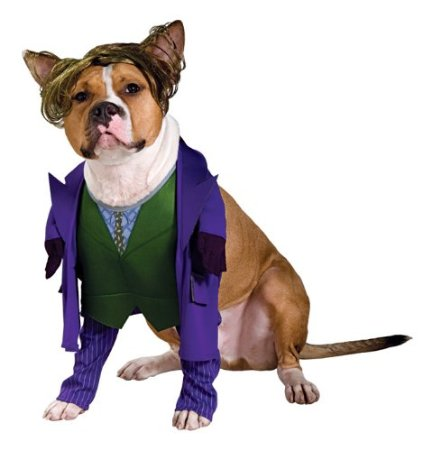 Joker dark knight dog costume on amazon.