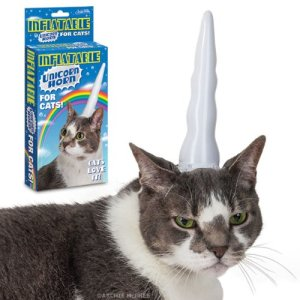 inflatable halloween unicorn horn for a cat.