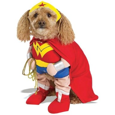 wonder woman dog costume on amazon