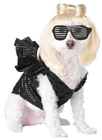 lady gaga dog costume  sc 1 st  Clattertron : dog marilyn monroe costume  - Germanpascual.Com
